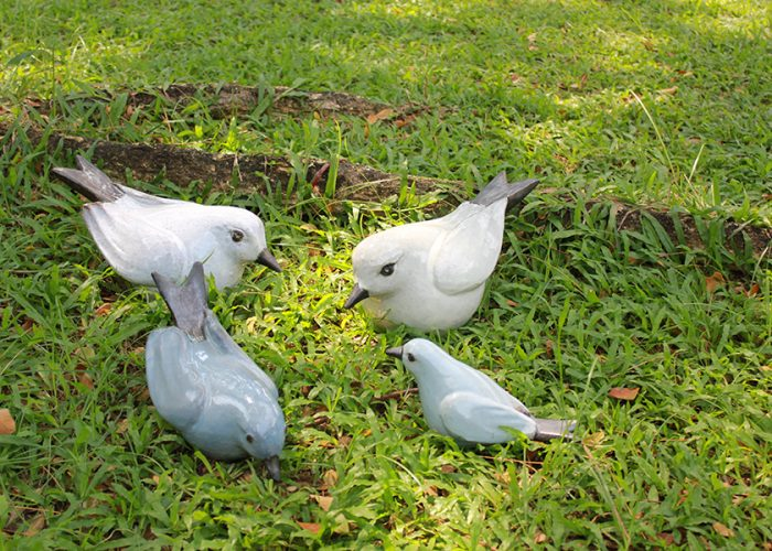20171117-20171117-birds-ST-Big-OK-2